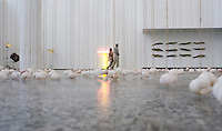 MUCA contemporary art museum at the Mexico City campus (Ciudad Universitario) of the UNAM (Universidad Autonomo de Mexico) Mexico City. June 20, 2008