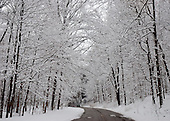 A canopy of snow covered trees above a road through the Rocky RIver Reservation of the Cleveland Metroparks.