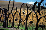 Farm fence made up of metal wheels Eastern Washington Union Town Washington State USA.