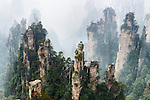 Foggy mountan landscape scenery of Zhangjiajie National Forest Park, Zhangjiajie, Hunan, China