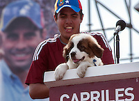 Venezuela: Caracas,30/09/12 .Progress, a Mucuchies breed dog, which was gifted to the opposition candidate Henrique Capriles, during one of his election campaign tour of Merida, is shown on stage where Capriles give his closing campaign speech in Caracas.Carlos Hernandez/Archivolatino
