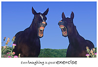 Even laughing is great exercise