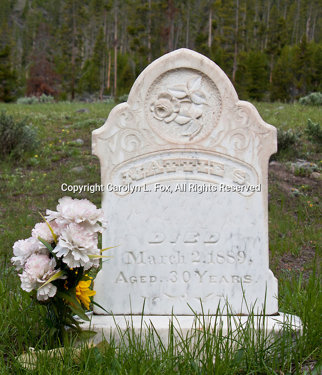 A grave is in Yellowstone National Park behind the outhouse of one of the popular picnic spots.  How many people have seen it?