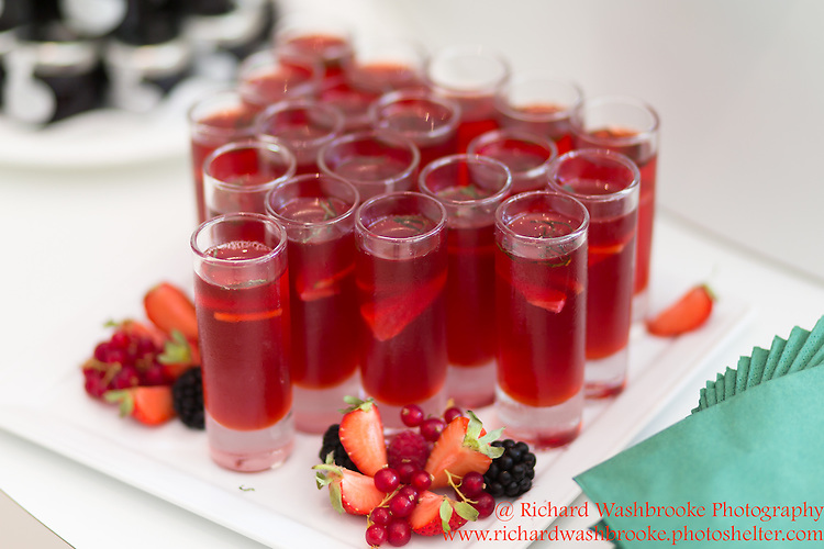 Red Photographic - BNP Paribas Tennis Classic, The Hurlingham Club, London. 26th June 2015<br /> <br /> Photo:  - Richard Washbrooke Red Photographic
