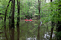 SC00020-00...SOUTH CAROLINA - Art and Emma Dombay canoeing in Congaree National Park near Wise Lake. (MR# D15 -D16)