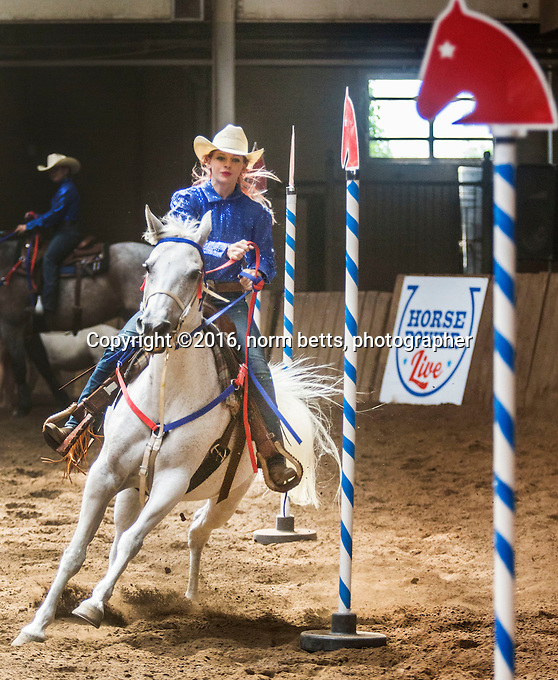 Horse Power Live 2016, during their 18-day run in August in the CNE's fabled Horse Palace in Toronto and at the  International Ploughing Matches, mid September, in Harrison, Ontario Canada.<br /> photos by Norm Betts<br /> normbetts@canadianphotographer.com<br /> &copy;2016, Norm Betts, photographer<br /> 416 460 8743