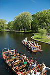 The historic and ever-popular Swan Boats of Boston's Public Garden are powered by pedals driven by boatmen at the rear of the vessel