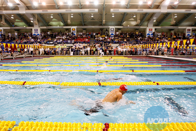 Swimming championship ncaa photos for University of minnesota swimming pool