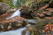 Talford Brook Cascades along Talford Brook during the autumn months in Thornton, New Hampshire USA.