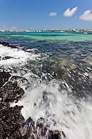 Coastline on the Island of Santa Cruz, Galapagos Islands, Ecuador.
