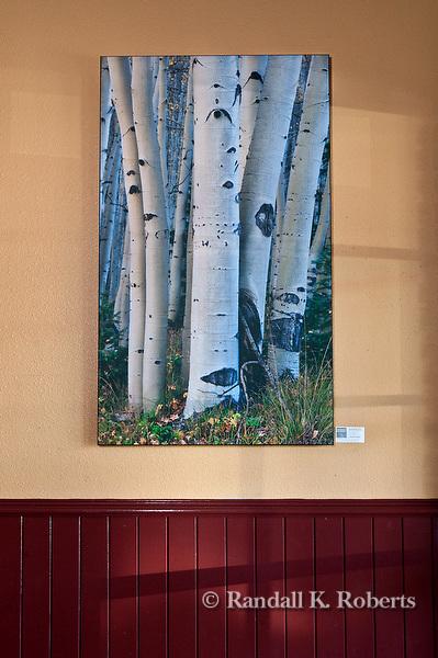 """Aspen Boles"" photograph by Randall K. Roberts on display at 730 South restaurant in Denver."