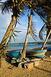 Fishing boats under palm trees along Playa Las Terranas during sunset, Las Terranas, Samana, Dominican Republic