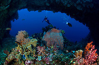 Scuba diver exploring a coral and sponge garden beneath the Arch, a dive-site in Fathers Reefs off New Britain Island, Papua New Guinea.