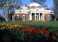 Monticello-Home of Thomas Jefferson in Charlottesville, Va. Photo/Andrew Shurtleff..spring tulips, garden