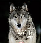 2013 Wolves <br />