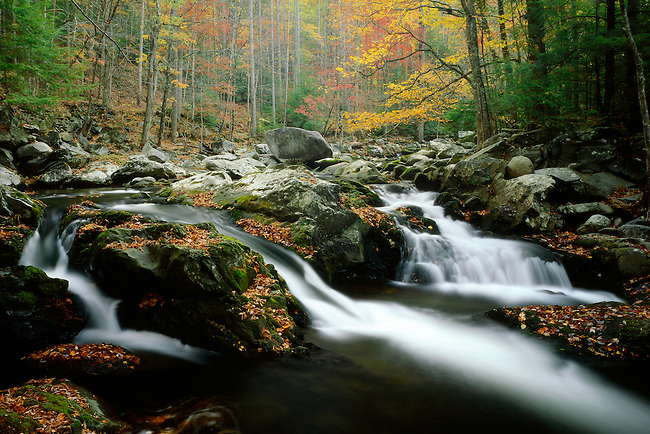 Autumn along Middle Prong of Little River, Tremont