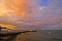 Massachusetts, Martha's Vineyard, Oak Bluffs, Ferry Sunset