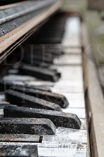 Piano keyboard weathering away outdoors, shot from the side using very shallow focus.