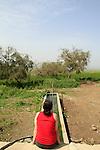 Ein Sirin in Yavniel Heights