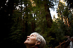 Joanna Daam of Canada looks up at the redwoods in Muir Woods National Monument, January 26, 2011.