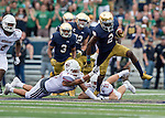 9.26.15 ND vs. UMass 236.JPG by Barbara Johnston