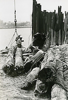 1967  November  21..Historical         ..CAPTION..Sam McKay.NEG# SLM66-16-24.4175..
