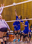 2 November 2014: Yeshiva University Maccabee Setter Aliza Muller, a Junior from Los Angeles, CA, in action against the Sarah Lawrence Gryphons at SUNY Purchase College, in Purchase, NY. The Maccabees defeated the Gryphons 3-2 in the NCAA Division III Women's Volleyball Skyline matchup. Muller ended her 2014 season with 40 Kills, 33 Digs and 18 Aces for the Lady Macs. Mandatory Credit: Ed Wolfstein Photo *** RAW (NEF) Image File Available ***