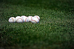 10 July 2011: Baseballs lie on the turf during batting practice prior to a game between the Colorado Rockies and the Washington Nationals at Nationals Park in Washington, District of Columbia. The Nationals shut out the visiting Rockies 2-0 to salvage the last game their 3-game series prior to the All-Star break. Mandatory Credit: Ed Wolfstein Photo