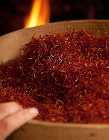 Saffron harvested from the Navelli region, in the province of L' Aquila in Abruzzo, Italy.  Obtained from the stem of the 'crocus sativus' flowers which are hand picked from the fields in and around the small villages of Navelli and Civitaretenga.  Saffron being dried in front of an open fire.