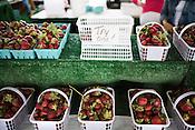 Locavore | Strawberries
