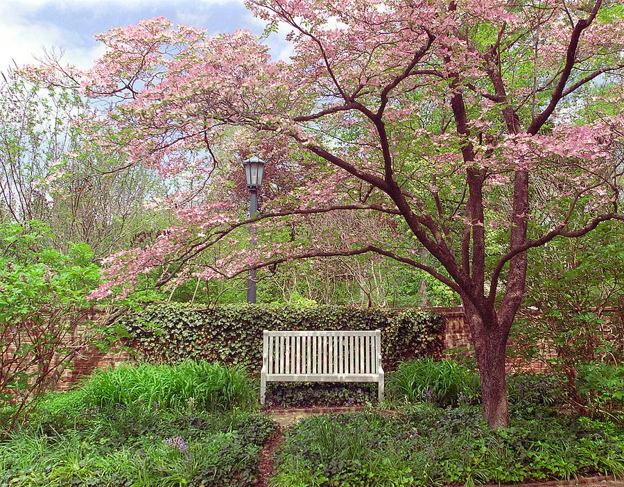 pavilion garden