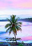 Costa Rica, Cahuita, Cahuita National Park,  Lowland Tropical Rainforest, Caribbean Coast, Dawn
