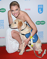 DEC 11 Guide Dog of the Year Awards