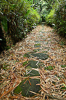 Ancient stone paths like this connect all the villages in Yap, Micronesia. (Photo by Matt Considine - Images of Asia Collection)