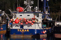 Tamar, Cordova, Alaska, US
