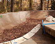 November 19, 2011. Chapel Hill, NC.. The end of construction on the toilet bowl addition at Frank's ramp.