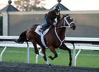 24 October.  Havre De Grace works at Keeneland.