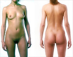 Surface anatomy of  anterior and posterior view of Caucasian female nude