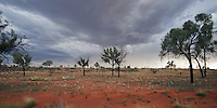 Highly localised rainstorms in the Australian outback