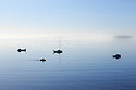 Boston Bay Australia