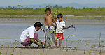 In this 2007 photo from the coastal village of Moawo, 5-year old Jefrin Zendrato (right) and his 10-year old brother Fajrin help their father Idris plant mangrove seedlings, part of a project on the Indonesian island of Nias to improve habitat for sea life and provide some protection from future tsunamis. The project is sponsored by the Yakkum Emergency Unit (YEU), a member of the ACT Alliance.