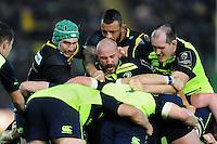Northampton Saints v Leinster