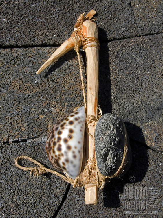 Ancient Hawaiian octopus lure made with a cowry shell