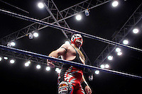 A Luchador (fighter) faces the crowd. Lucha Libre is a style of wrestling started in Mexico in 1933. The name means Free Fight, and matches tend to be focussed on spectacle and theatre with fans cheering for their favourite characters, who wear masks while jumping from the ropes, flipping opponents, and occasionally crashing into the crowd..&copy;Jacob Silberberg/Panos/Felix Features.