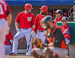 9 March 2013: Washington Nationals outfielders Bryce Harper (left) and Jayson Werth talk at the steps of the dugout during a Spring Training game against the Miami Marlins at Space Coast Stadium in Viera, Florida. The Nationals edged out the Marlins 8-7 in Grapefruit League play. Mandatory Credit: Ed Wolfstein Photo *** RAW (NEF) Image File Available ***