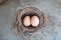 two eggs in a nest