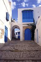Tunisia, vista della citt&agrave; di Sidi Bou Said caratterizzata dall'uso dei colori bianco e blu.<br /> Tunisia, view of the city Sidi Bou Said characterized by the use of the colors blue and white.