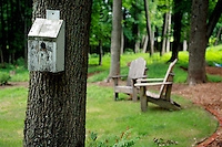 Birdhouse and Adirondack chairs in a Lazy Tranquil Summer Backyard.