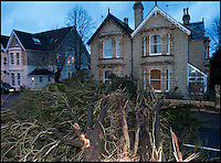 BNPS.co.uk (01202 558833)<br /> Pic: PhilYeomans/BNPS<br /> <br /> A tree crashed into a house and car in Poole, Dorset last night. The 40 foot pine tree also brought down powerlines and completely blocked a road.