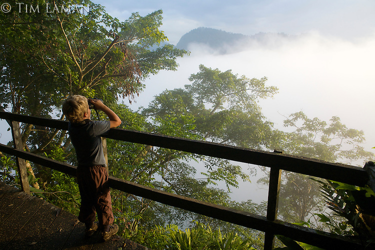 7 year old boy looks out over mist shrounded rain forest from a hill top lookout platform.